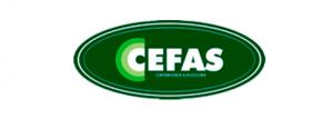 Logo Agradecimento 1 - Contabilidade em Santos - SP |  Cefas Contabilidade e Administração - Agradecimento Abertura de Empresas