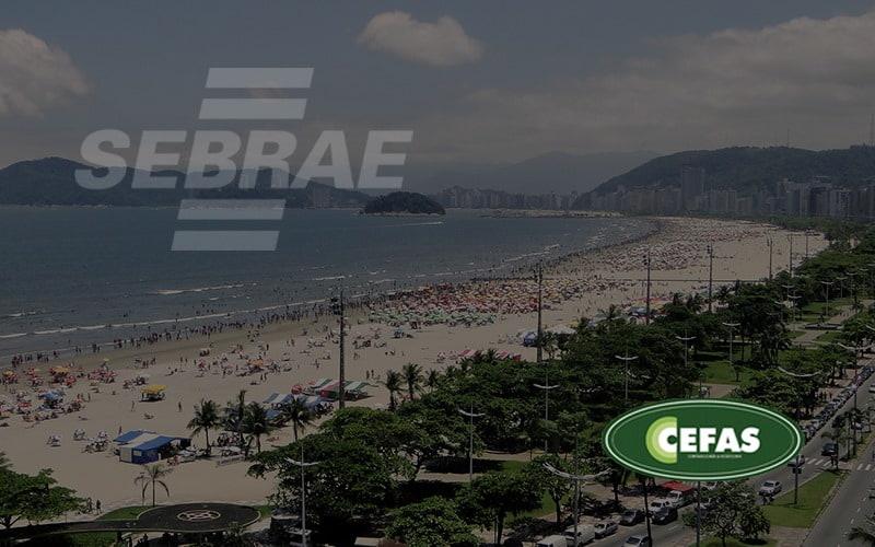 Como O Sebrae Santos Pode Ajudar O Microempresário (1) - Contabilidade em Santos - SP |  Cefas Contabilidade e Administração - Como o Sebrae Santos pode ajudar o microempresário?