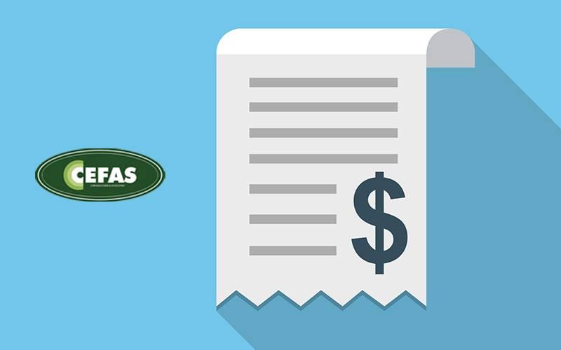 Como Emitir Nota Fiscal De Serviços Eletrônica Na Baixada Santista - Contabilidade em Santos - SP |  Cefas Contabilidade e Administração - Como emitir nota fiscal de serviços eletrônica na Baixada Santista?