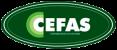 Contabilidade em Santos - SP | CEFAS Contabilidade e Assessoria